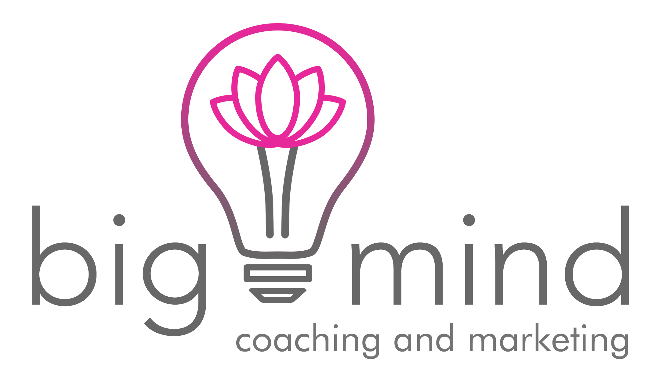 big mind coaching and marketing